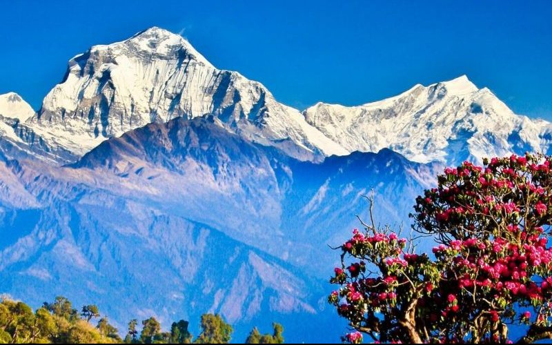 Low Budget Trekking in Nepal