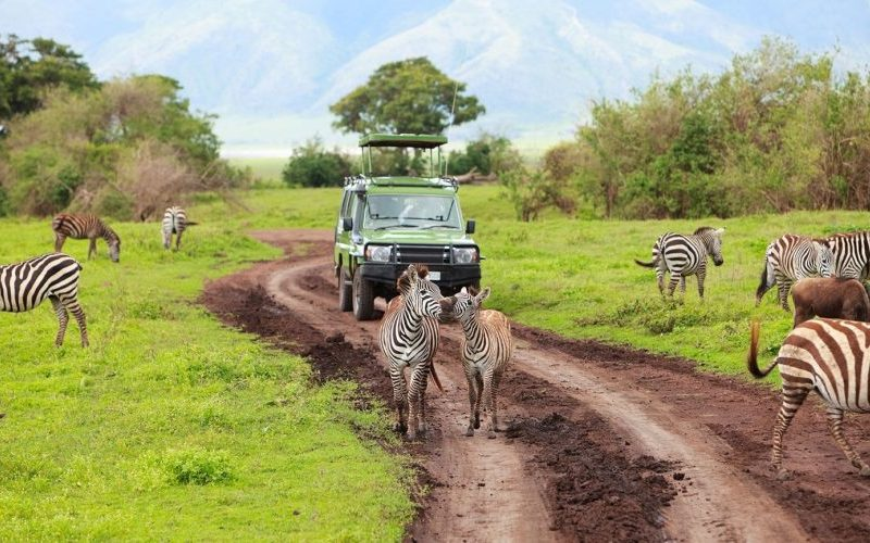 Consequences of Transportation in Tourism